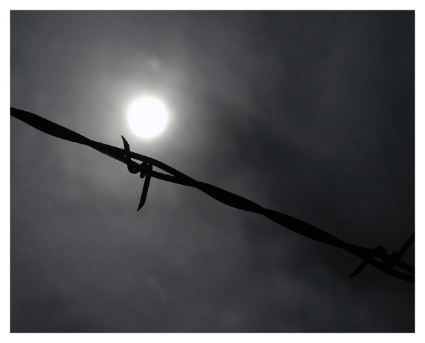 26G_06H17_Barbed Wire Pantano Wash_0121-04